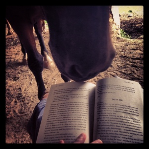 Nelson, nosy about my book